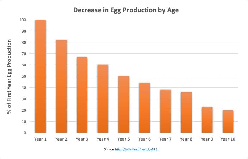 chicken egg production by year